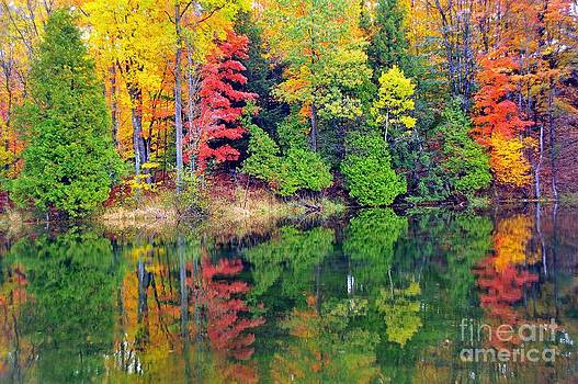 Terri Gostola - Autumn Paintbox