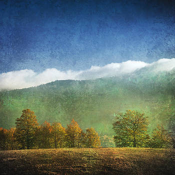 Autumn Pastel by Toma Bonciu