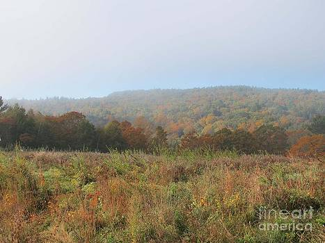 Autumn Pasture by Linda Marcille