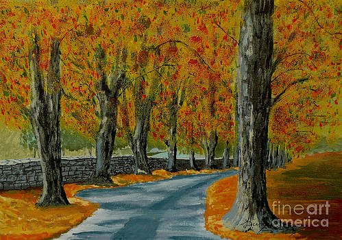 Autumn pathway by Anthony Dunphy