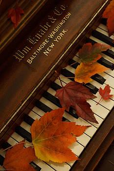 Mick Anderson - Autumn Piano 11