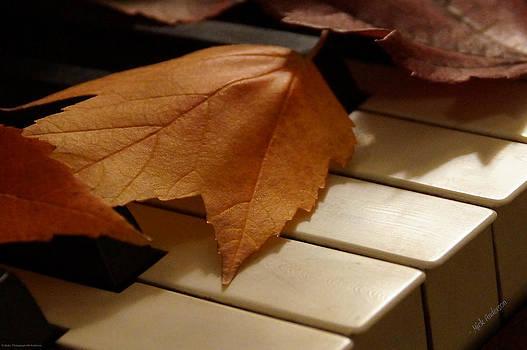 Mick Anderson - Autumn Piano 12