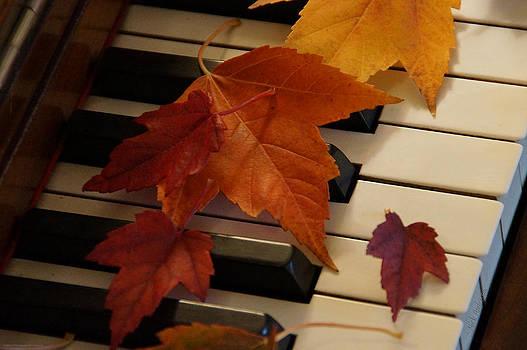 Mick Anderson - Autumn Piano 6