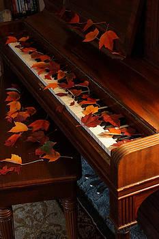 Mick Anderson - Autumn Piano 9