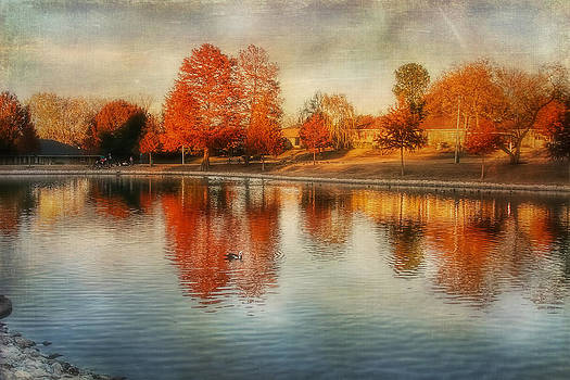 Autumn Pond by Joan Bertucci