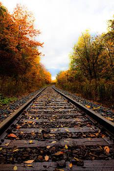 Autumn Railway by Craig Brown
