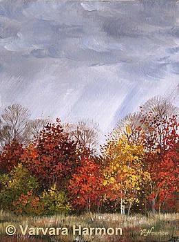 Autumn Rain by Varvara Harmon