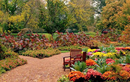 Rosanne Jordan - Autumn Rainbow Garden