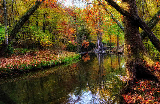 Autumn Reflection in North Georgia by Greg Mimbs