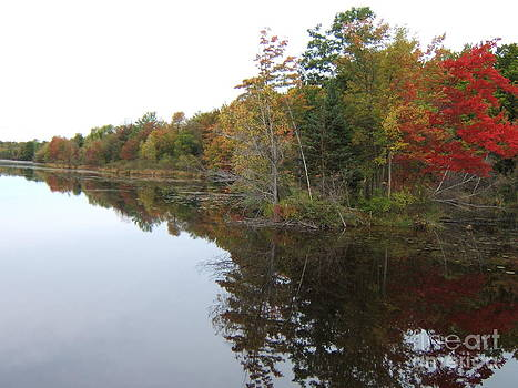 Autumn Reflection by Margaret McDermott