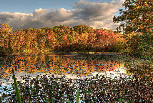 Autumn Reflection on Foster Pond by At Lands End Photography