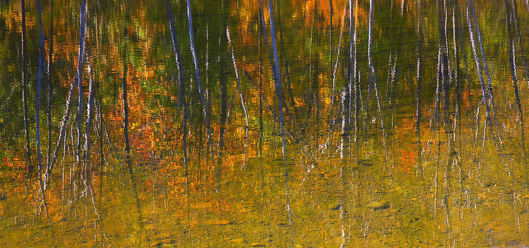 Gary Hall - Autumn Reflections