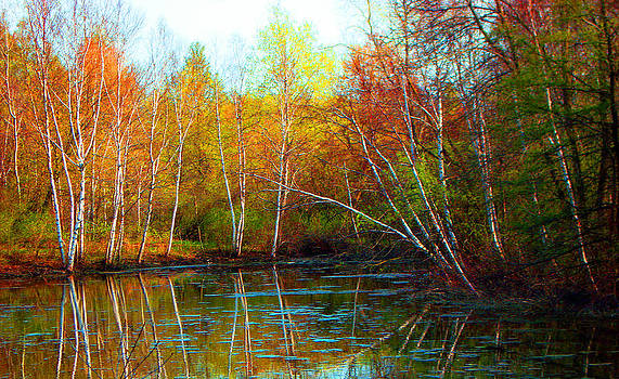 Autumn Reflections by James Hammen