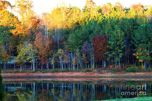 Autumn Reflections by Jinx Farmer