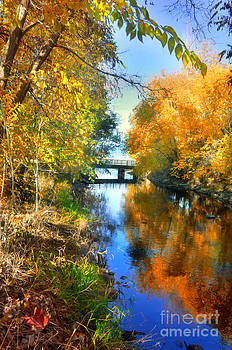 Autumn Reflections on a Friday Afternoon by Tara Turner