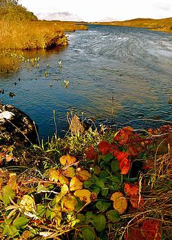 HweeYen Ong - Autumn River
