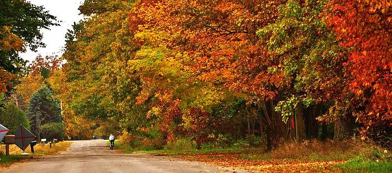 Autumn Road From a Bicycle by Mary Frances