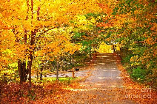 Terri Gostola - Autumn Road Home