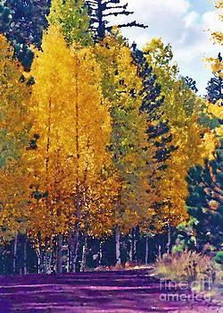 Autumn Road  by Juls Adams