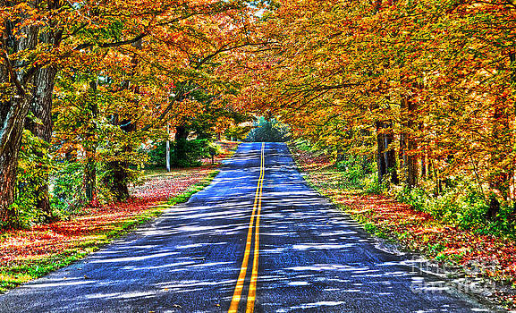 Autumn Road Oneida County NY by Diane E Berry