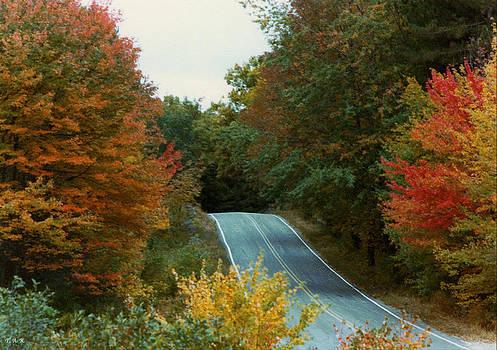 Autumn Road by Thomas Rehkamp