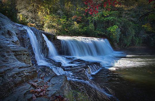 Autumn Rush by Greg Mills