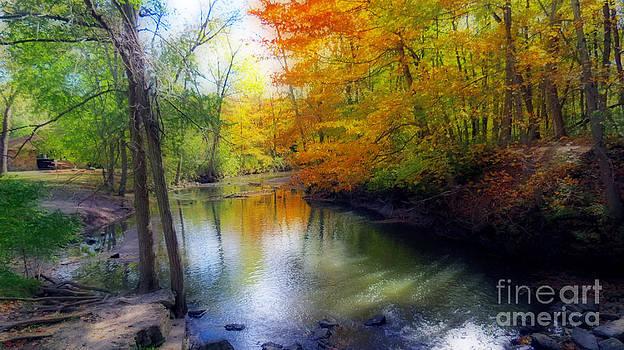 Autumn Serenity  by Kay Novy