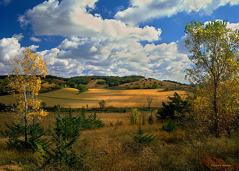 Autumn Skies by Bruce Morrison