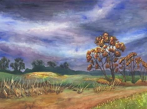 Autumn Sky by Oty Kocsis