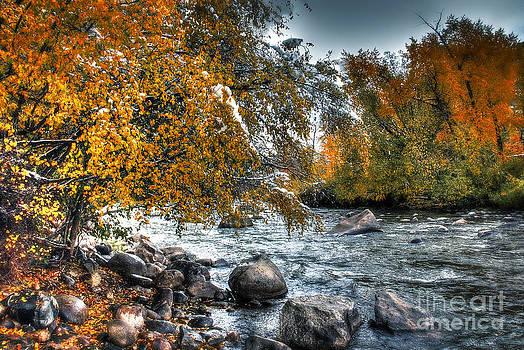 Bob Hislop - Autumn Snow
