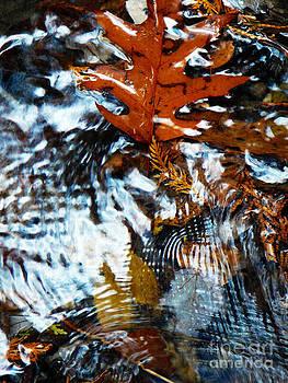 Autumn Snow by Chris Sotiriadis