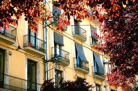 HweeYen Ong - Autumn Spain