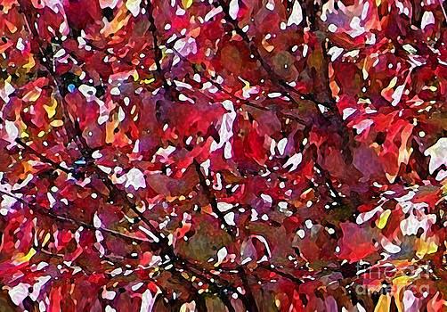 Autumn Sparkle by Steven Huszar