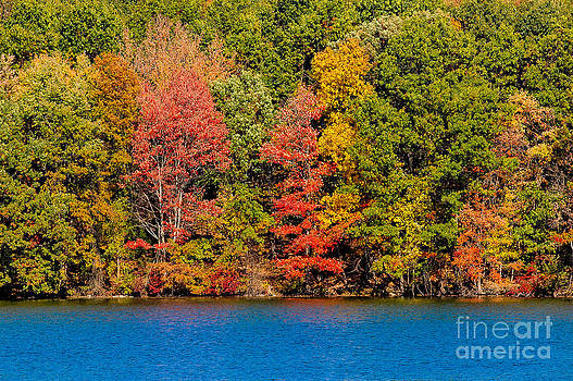 Autumn Spectacular at the Lake NY by Tony Gliatta