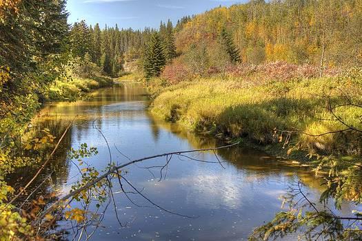 Autumn Splendor by Jim Sauchyn