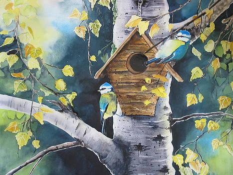 Autumn by Stephanie Zobrist