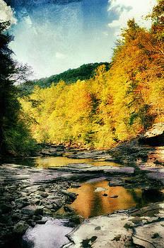 Autumn Stream by Heather Bridenstine