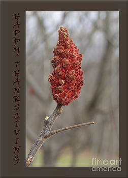 Andrew Govan Dantzler - Autumn Sumac  Thanksgiving Greeting Card #1