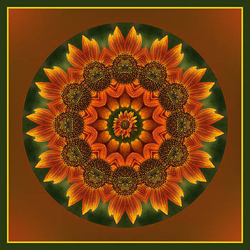 Autumn Sunflower Kaleidoscope by Liz Mackney
