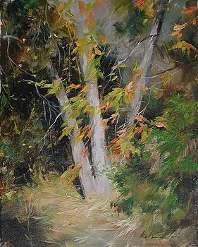 Autumn Sunlight by Kelvin  Lei