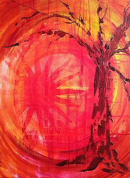 Autumn Sunset by Brenda Nachreiner