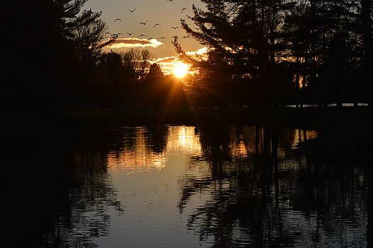 Autumn Sunset by Timothy Thornton