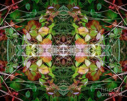 David Hargreaves - Autumn Symmetry
