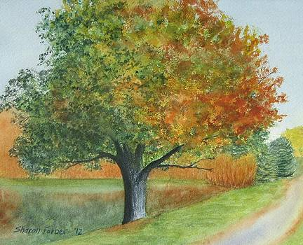 Autumn Tree by Pond by Sharon Farber