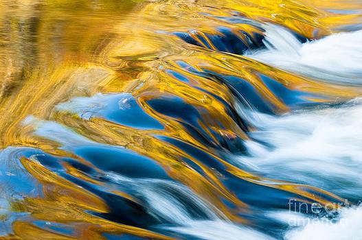 Oscar Gutierrez - Autumn Tree Reflections