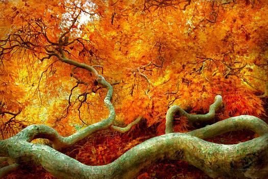 Mike Savad - Autumn - Tree - Serpentine