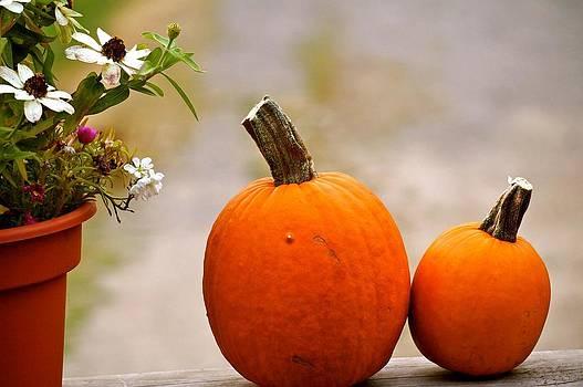 Autumn Waits  by Danielle  Broussard