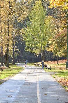 Nicki Bennett - Autumn Walk in the Park