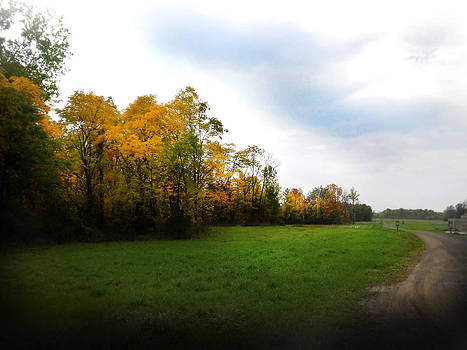 Autumn Walk by Jonathan Westfall