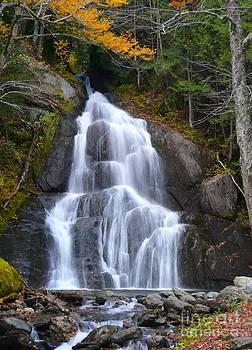 Christine Stack - Autumn Waterfall